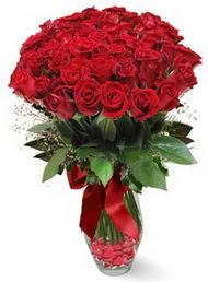 19 adet essiz kalitede kirmizi gül  Erzincan ucuz çiçek gönder