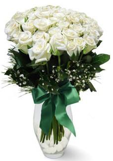 19 adet essiz kalitede beyaz gül  Erzincan İnternetten çiçek siparişi