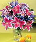 Erzincan çiçekçiler  Sevgi bahçesi Özel  bir tercih