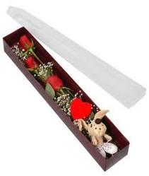 kutu içerisinde 3 adet gül ve oyuncak  Erzincan çiçek satışı