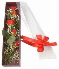 kutu içinde 5 adet kirmizi gül  Erzincan çiçek gönderme sitemiz güvenlidir