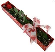 Tek kirmizi gül kutu içerisinde  Erzincan çiçek siparişi vermek