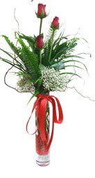 Erzincan online çiçekçi , çiçek siparişi  3 adet kirmizi gül vazo içerisinde