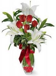 Erzincan çiçek yolla  5 adet kirmizi gül ve 3 kandil kazablanka