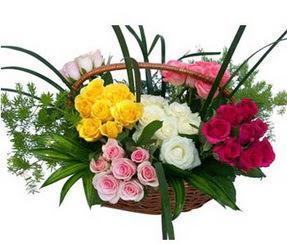 Erzincan kaliteli taze ve ucuz çiçekler  35 adet rengarenk güllerden sepet tanzimi