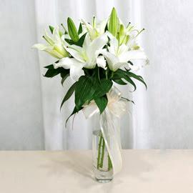 Erzincan hediye çiçek yolla  2 dal kazablanka ile yapılmış vazo çiçeği