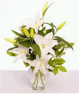 Erzincan hediye sevgilime hediye çiçek  2 dal cazablanca vazo çiçeği