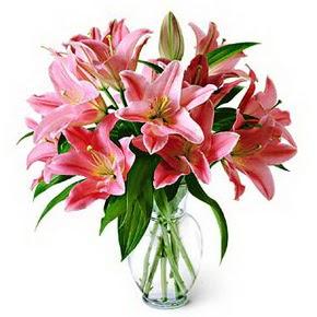 3 dal kazablanka görsel vazosu  Erzincan çiçek gönderme sitemiz güvenlidir