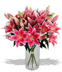 4 dal cazablanca görsel vazosu  Erzincan yurtiçi ve yurtdışı çiçek siparişi