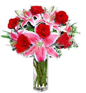 Erzincan anneler günü çiçek yolla  1 dal cazablanca ve 6 kırmızı gül çiçeği