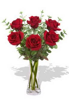Erzincan yurtiçi ve yurtdışı çiçek siparişi  6 kırmızı gül vazosu