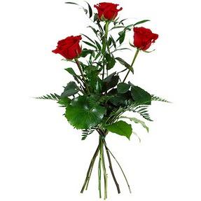 Erzincan çiçek , çiçekçi , çiçekçilik  3 adet kırmızı gülden buket