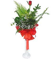 Erzincan hediye çiçek yolla  Cam vazoda masum tek gül