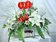Erzincan çiçekçiler  Anthurim Kazablanka  gül