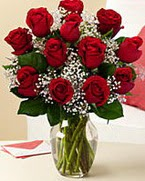 Sevgilime hediye 9 adet 1.ci kalite gül  Erzincan hediye çiçek yolla