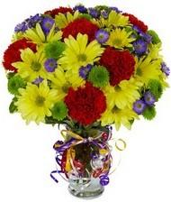 En güzel hediye karışık mevsim çiçeği  Erzincan güvenli kaliteli hızlı çiçek