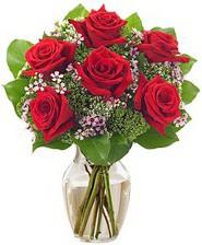 Kız arkadaşıma hediye 6 kırmızı gül  Erzincan çiçek gönderme sitemiz güvenlidir