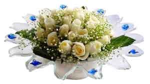 Erzincan çiçek siparişi sitesi  11 adet Beyaz güller özel cam tanzim