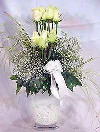 Erzincan çiçek gönderme  9 adet vazoda beyaz gül - sevdiklerinize çiçek seçimi