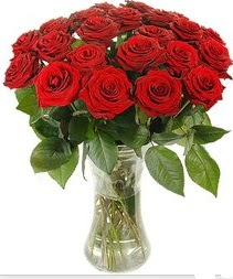 Erzincan çiçekçiler  Vazoda 15 adet kırmızı gül tanzimi
