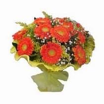 Erzincan anneler günü çiçek yolla  11 adet seçme gerbera çiçegi