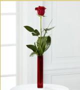 Vazo içerisinde 1 adet kırmızı gül  Erzincan çiçek gönderme sitemiz güvenlidir