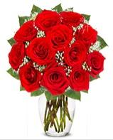 12 adet vazoda kıpkırmızı gül  Erzincan çiçekçi telefonları