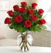Vazo içerisinde 12 kırmızı gül  Erzincan çiçek servisi , çiçekçi adresleri