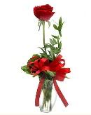 vazo içerisinde 1 adet kırmızı gül  Erzincan çiçek online çiçek siparişi