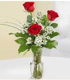 Vazo içerisinde 3 adet kırmızı gül  Erzincan çiçek servisi , çiçekçi adresleri