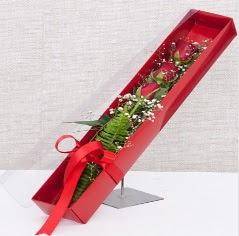 Kutu içerisinde 3 adet kırmızı gül  Erzincan çiçek gönderme