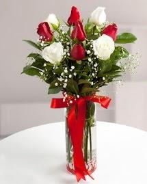 5 kırmızı 4 beyaz gül vazoda  Erzincan çiçek satışı