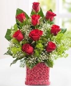 Cam içerisinde 9 adet kırmızı gül  Erzincan çiçek yolla , çiçek gönder , çiçekçi