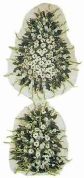 Erzincan İnternetten çiçek siparişi  Model Sepetlerden Seçme 3