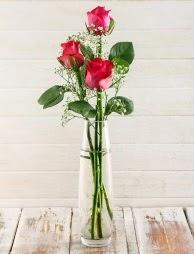 Cam içerisinde 3 kırmızı gül  Erzincan çiçek servisi , çiçekçi adresleri
