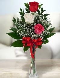 Camda 2 kırmızı 1 beyaz gül  Erzincan kaliteli taze ve ucuz çiçekler