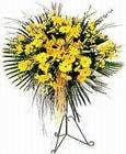 Erzincan online çiçek gönderme sipariş  Sari kazablanka Ferforje