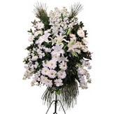 Erzincan çiçekçi telefonları  Ferforje beyaz renkli kazablanka