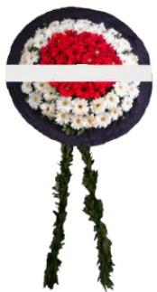mozele çiçeği  Erzincan çiçekçi mağazası