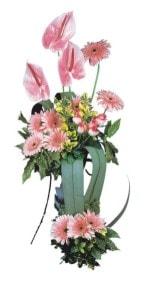 Erzincan çiçek siparişi vermek  Pembe Antoryum Harikalar Rüyasi
