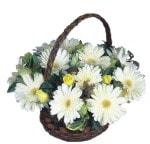 Erzincan online çiçekçi , çiçek siparişi  Sepet içinde  gerbera aranjmani