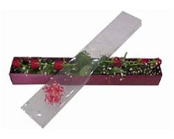 Erzincan hediye çiçek yolla   6 adet kirmizi gül kutu içinde