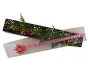 Erzincan güvenli kaliteli hızlı çiçek  3 adet gül.kutu yaldizlidir.