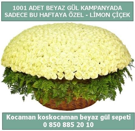 1001 adet beyaz gül sepeti özel kampanyada  Erzincan 14 şubat sevgililer günü çiçek