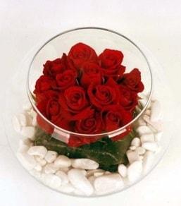 Cam fanusta 11 adet kırmızı gül  Erzincan hediye sevgilime hediye çiçek