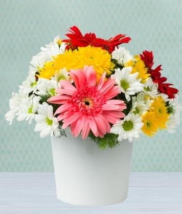 Seramik Vazoda Gelbera ve Papatya  Erzincan hediye sevgilime hediye çiçek