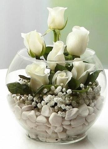 Beyaz Mutluluk 9 beyaz gül fanusta  Erzincan online çiçekçi , çiçek siparişi