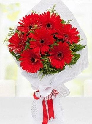 Kırmızı Gelbera Buketi  Erzincan çiçek gönderme sitemiz güvenlidir