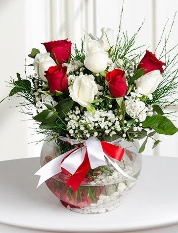 Aşk Küresi  5 beyaz 5 kırmızı gül fanusta  Erzincan çiçek yolla , çiçek gönder , çiçekçi