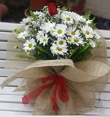 Papatya 1 adet kırmızı gül buketi  Erzincan İnternetten çiçek siparişi